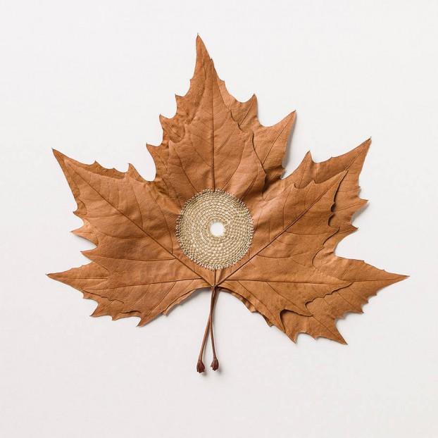 leaves 1 4
