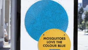 12 10 16 mosquito