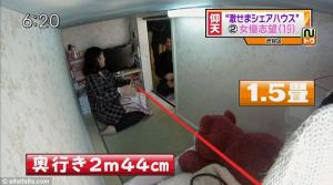 tiny apartment 2