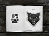 black cat4