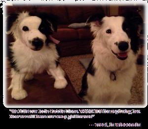 josie-and-clone
