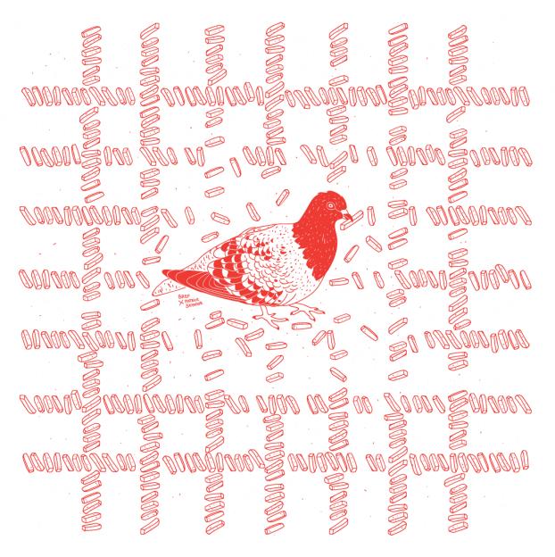 patseymourxbrefmtl-2pigeon