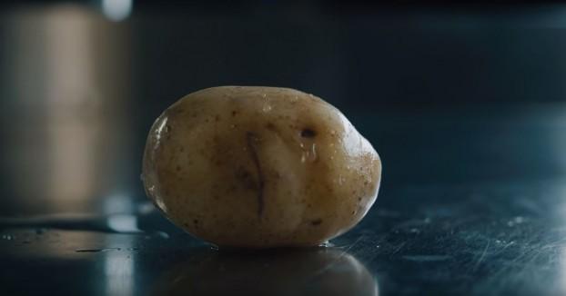 potatofries