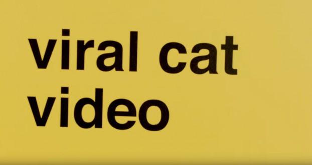 catmain